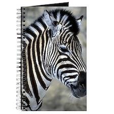 Zebra Art Journal