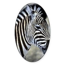Zebra Art Decal