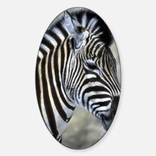 Zebra Art Decal