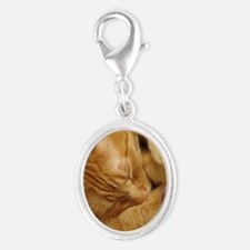 Sleepy Tiger Silver Oval Charm