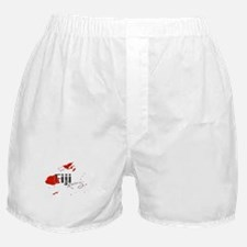 Fiji Diving Boxer Shorts