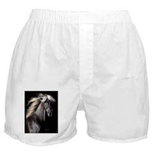 choco_horse_card Boxer Shorts