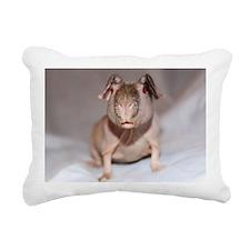 IMG_7089 Rectangular Canvas Pillow