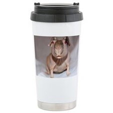 IMG_7089 Travel Mug