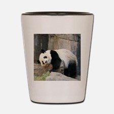 Copy of panda1 Shot Glass