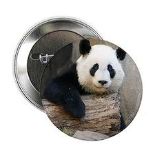 "Copy of panda3 2.25"" Button"