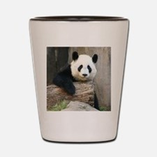 Copy of panda3 Shot Glass