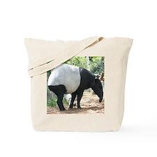 Copy of IMG_4497 Tote Bag