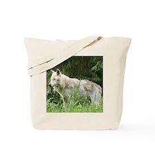 Copy of IMG_6111 Tote Bag