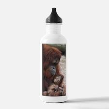 IMG_6818 - Copy Water Bottle