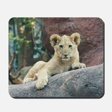 lion cub Mousepad