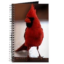 cardinal1_lgp Journal