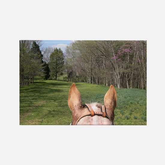 horse_ride_mini_poster Rectangle Magnet