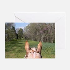 horse_ride_mini_poster Greeting Card