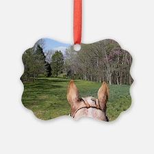 horse_ride_mini_poster Ornament