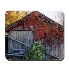 old_barn_mini Mousepad