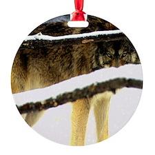 7 Ornament