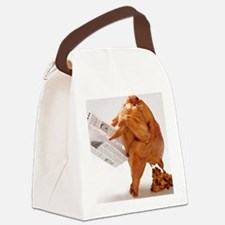 turky-poop Canvas Lunch Bag