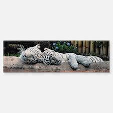 Sleeping White Tigers Bumper Bumper Sticker