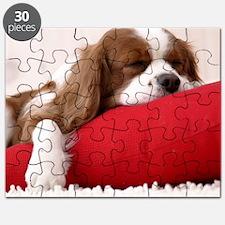 Spaniel pillow Puzzle