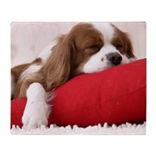 Spaniel pillow Throw Blanket
