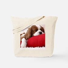 Spaniel pillow Tote Bag