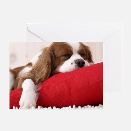 Spaniel pillow Greeting Card
