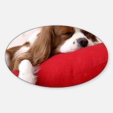 Spaniel pillow Decal