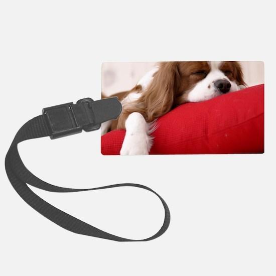 Spaniel pillow Luggage Tag