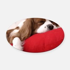 Spaniel pillow Oval Car Magnet