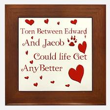 Edward  JacobTorn Blanket Framed Tile