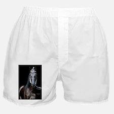 blk_walker_journal Boxer Shorts