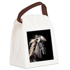 rocky_stich Canvas Lunch Bag