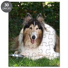 Regal_Lawn_100dpi Puzzle
