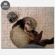 nov 20120 021 Puzzle