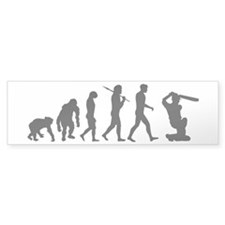 Evolution of Cricket Stickers
