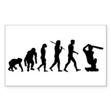 Evolution of Cricket Decal