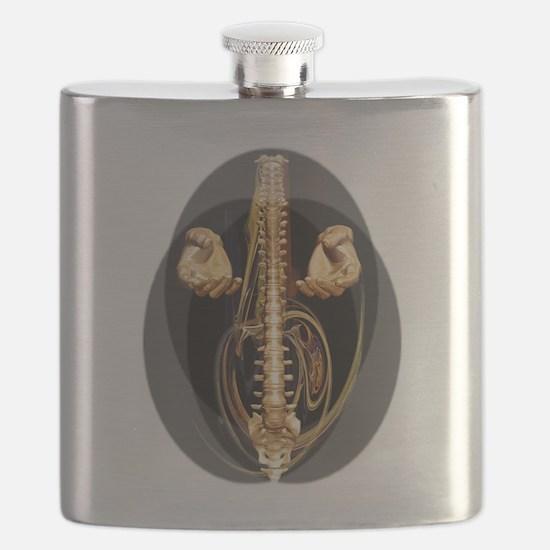dcb34 Flask