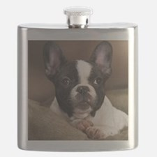 F pup pillow Flask