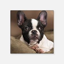"F pup pillow Square Sticker 3"" x 3"""