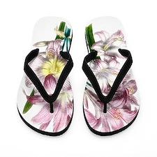 Vintage Pink Lily Flip Flops