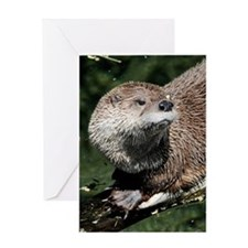 otter1_mini Greeting Card