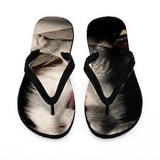 tired_cat_mini Flip Flops