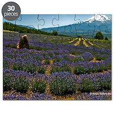 Labyrinth Lavender Field, Mt. Shasta, CA Puzzle
