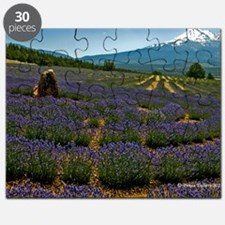 Labyrinth Lavender Field, Mt. Shasta, CA Puzzle