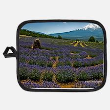 Labyrinth Lavender Field, Mt. Shasta, CA Potholder
