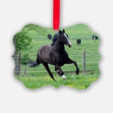 spring_walker_mini Ornament
