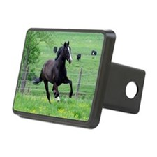 spring_walker_mini Hitch Cover
