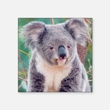 "Koala Smile round ornament Square Sticker 3"" x 3"""