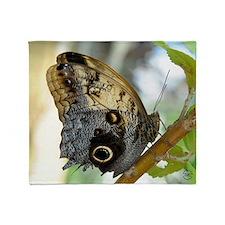 owl_butterfly_mpad Throw Blanket